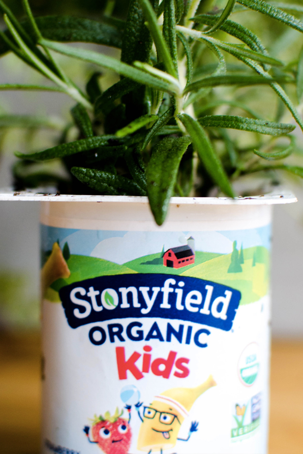 Check out what this influencer did for Stonyfield!