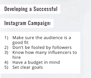 Developing a Successful Instagram Campaign